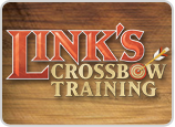 Link's crossbow training logo.png